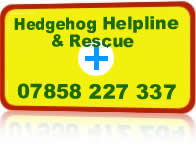 Wildlife rescue emergency callout